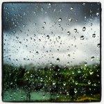 Raindrops on the office window